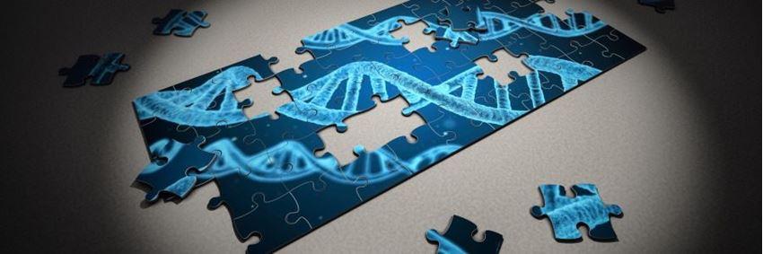 Een DNA-test kopen, waar moet ik op letten?